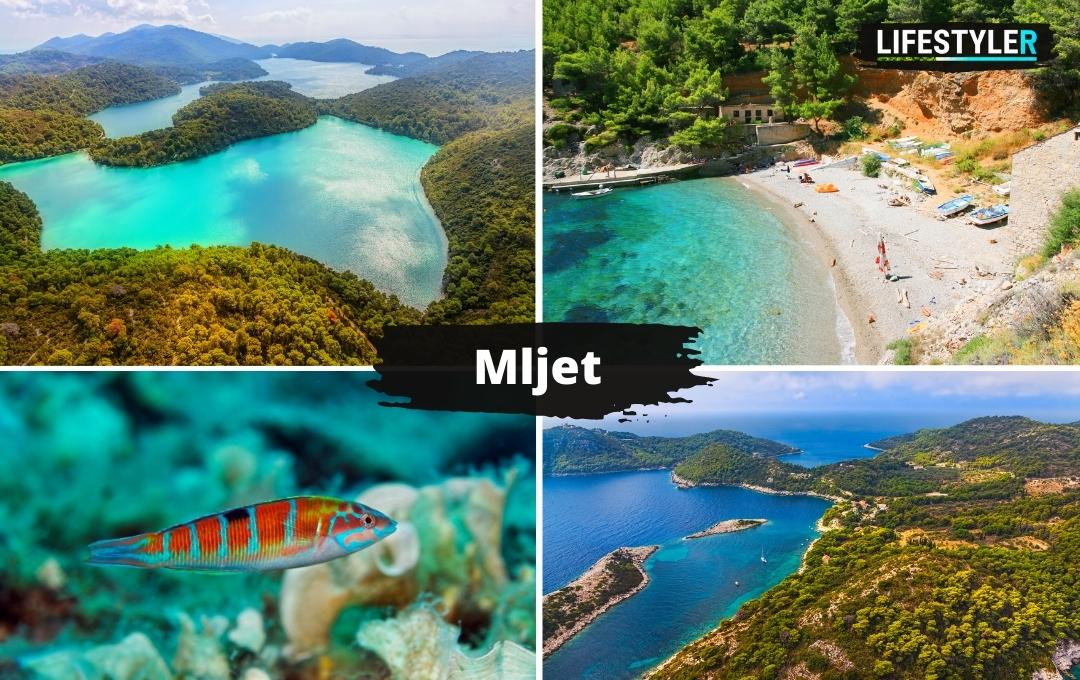 najpiekniejsze miejsca w Chorwacji - wyspa i park narodowy Mljet