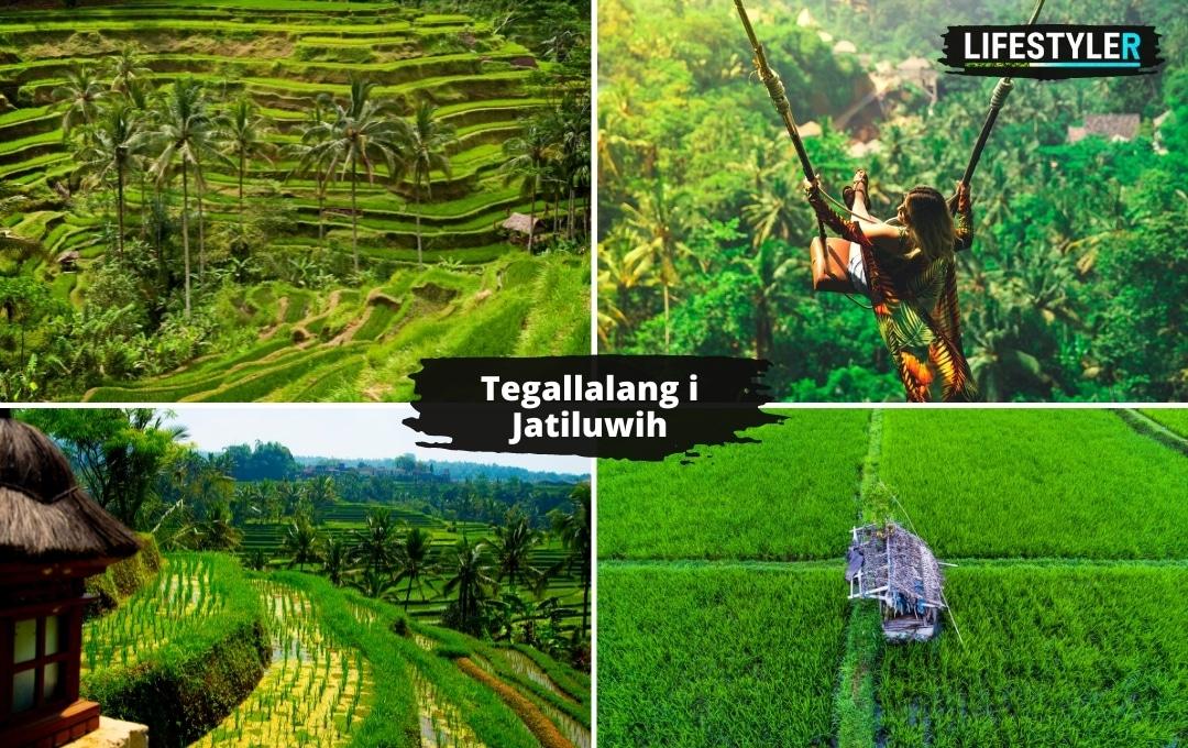 Tegallalang i Jatiluwih Bali